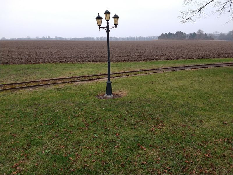 Vintage outdoor lamp. Lamppost Autumn Autumn colors Vintage Lamp Post Rural Scene Agriculture Sky Farmland Cultivated Land Foggy Agricultural Field