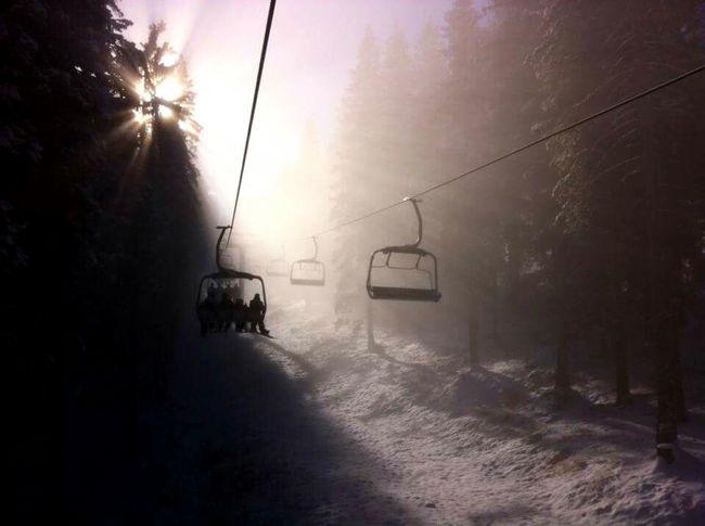 Winter Snow ❄ Sunshine Sunrays Photography TruePassion