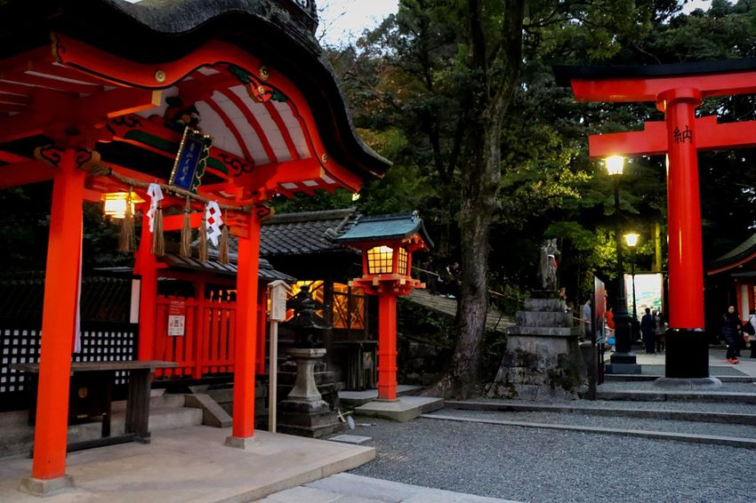 Old But Awesome Beautiful Architecture EyeEm Best Edits Creative Light And Shadow From My Point Of View Red Temple Shadows & Lights Light And Shadow Red Amzingview Architecture Night Lights Nightphotography Temple Architecture Darkportrait Fushimi Inari Kyoto History Architecture Japannes Temple