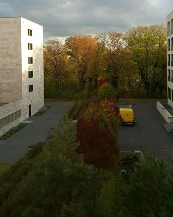 Sunlight City Frankfurt Am Main City Life Fall Fall Beauty Fall Colors Autumn Autumn colors University Campus University Tree Sky Architecture Building Exterior Built Structure Autumn Collection Residential Structure City Location Building Office Building
