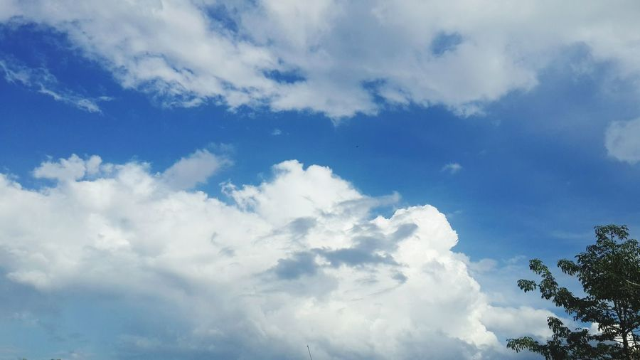 Sky Cloud - Sky Sky Blue No People Beauty In Nature Outdoors Day Nature