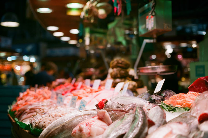 Seafood for sale at fish market