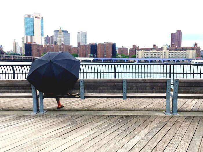 Umbrella 1 -