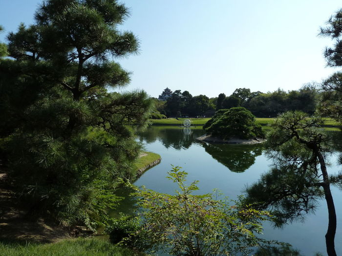 Clear Sky Day Green Color Japanese Garden Okayama Lake Landscape Nature No People Reflection First Eyeem Photo