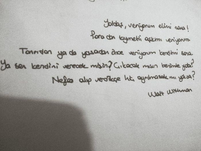 Walt Whitman Poems Lonely Night