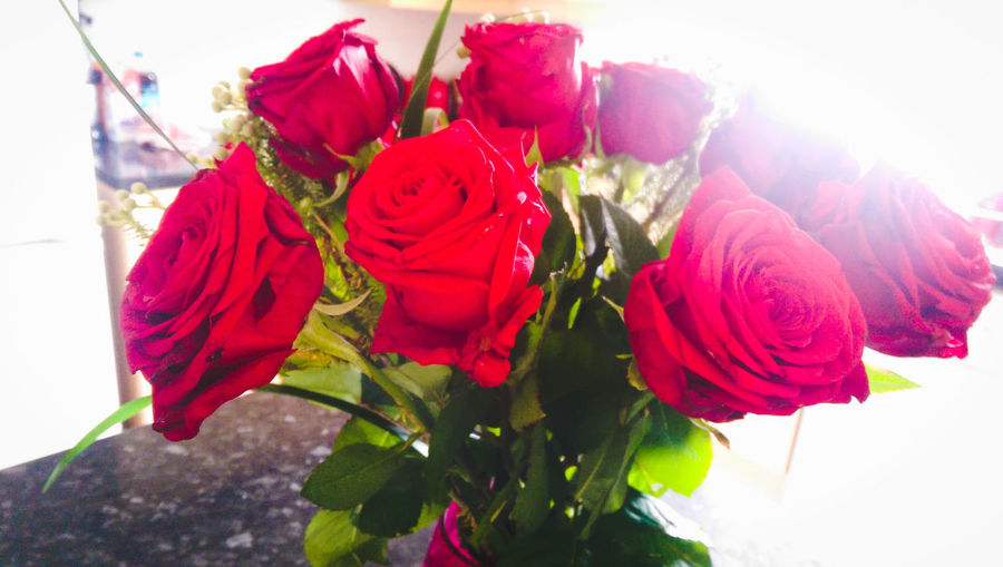 My beautiful roses. I'm such a lucky lady. Photography Flowers Love Luckylady