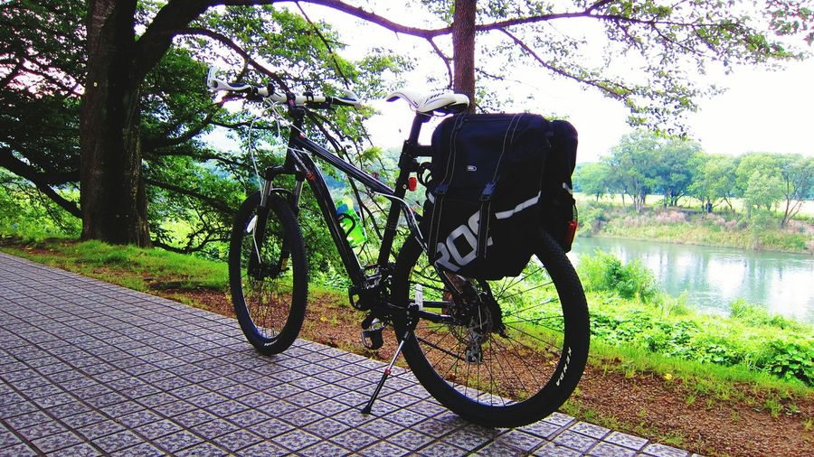 八幡京都 Doppelganer Bicycle Bicycle Bicycle Trip