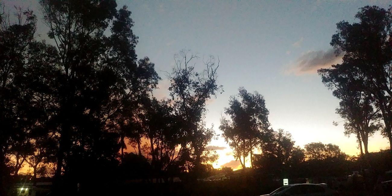 Silhouette Rainy Season
