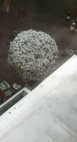 Snow ❄ Snow Day Antakya Antioch Oldpicture Streetphotography Open Edit Kubratemli
