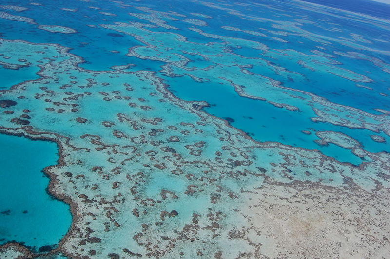 Great Barrier Reef. Queensland. Australia. Water Beauty In Nature High Angle View Nature No People Sea Blue Land Day Tranquility Beach Outdoors Aerial View Tranquil Scene Scenics - Nature Idyllic Full Frame Wet Non-urban Scene Turquoise Colored Clean Coral Reef Great Barrier Reef Queensland Australia