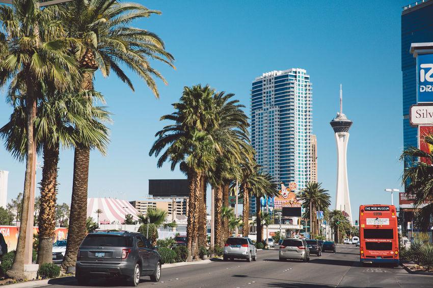 Cars City City Of Las Vegas Hotels Las Vegas Las Vegas NV Nevada Stratosphere Tower Street Tourist Attraction  Tourist Destination Mobility In Mega Cities