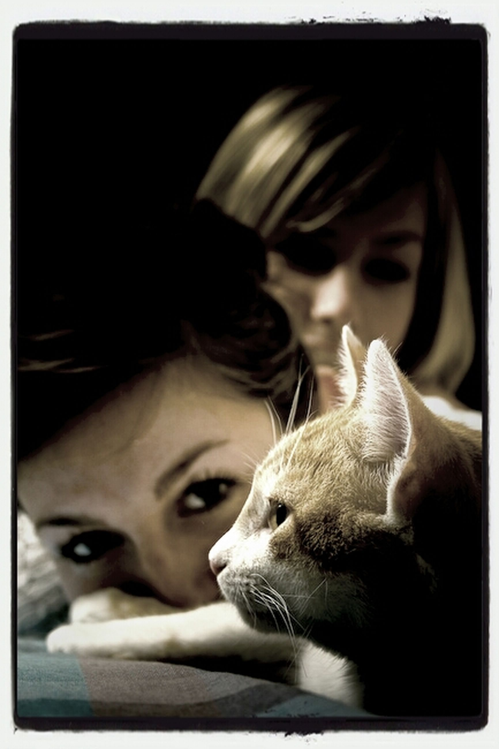 transfer print, auto post production filter, portrait, looking at camera, headshot, person, lifestyles, indoors, leisure activity, young adult, front view, head and shoulders, pets, close-up, animal themes, togetherness, mid adult, young women