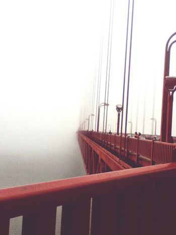 Seeing The Sights GoldenGateBridge Foggy San Francisco