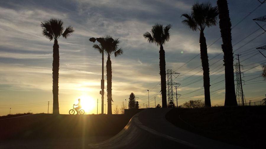 43 Golden Moments Bmx  Bmxporn California California Dreaming