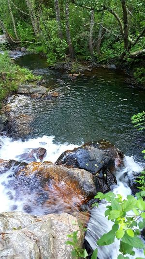 River View CascataS Rio Paisagem Natureza🍁 Natureza 🐦🌳 River Penhasco Water