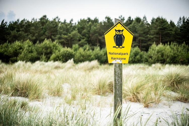 Auszeit an der Ostsee 2018 Nature Naturschutzgebiet Ostsee Ostseeküste Scenic Urlaub Outdoors Reisen Scenics - Nature