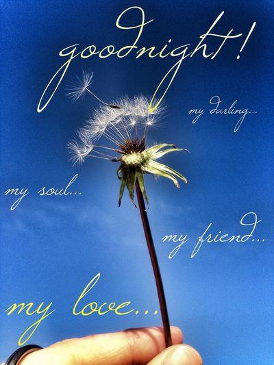 all a good night!