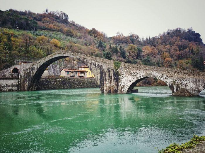 """""""Ponte della"""