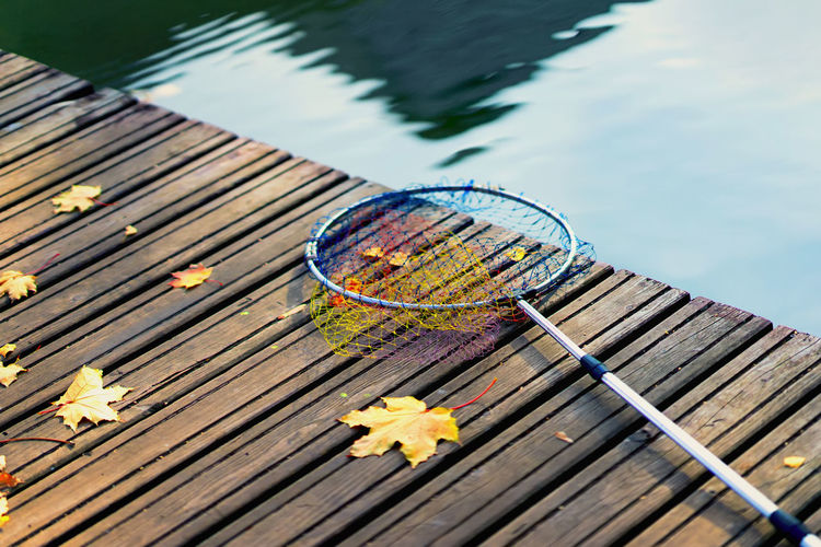 Fish landing net for fish, fishing tackle on a wooden bridge with fallen autumn yellow maple leaves. Minimalistic natural autumn background Water Nature Wood - Material No People Day Lake Outdoors Close-up Leaf Autumn Fall Fish Fishing Landing Tackle Bridge Maple Leaf Maple Leaves Hobby Net Fishing Pond Lifestyle Candid Concept