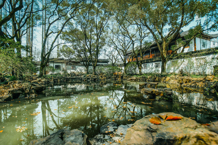 Architecture Built Structure Chinese Style Building EyeEmNewHere Historic Building No People Outdoors Tree