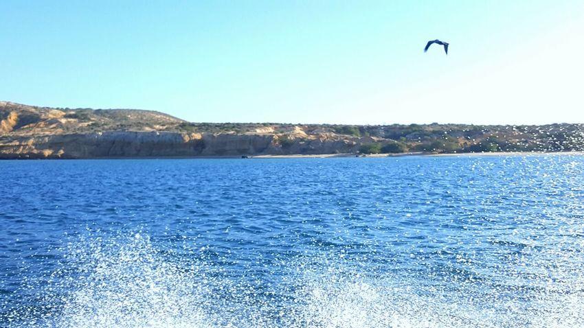 Playa Araya Cumaná Outdoors Water The Great Outdoors - 2017 EyeEm Awards