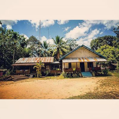 My home away from home in the village of Tembak in the middle of the Borneo Jungle. Borneo INDONESIA Jungle Forest Trees Riseoftheecowarriors Ecowarriorsrise Savetherainforests Saynotopalmoil Savetheorangutan Palmoil Nature Destruction Environment Water Canon Tamron Tembak Village Rainforest Kalimantan Westkalimantan Dayak