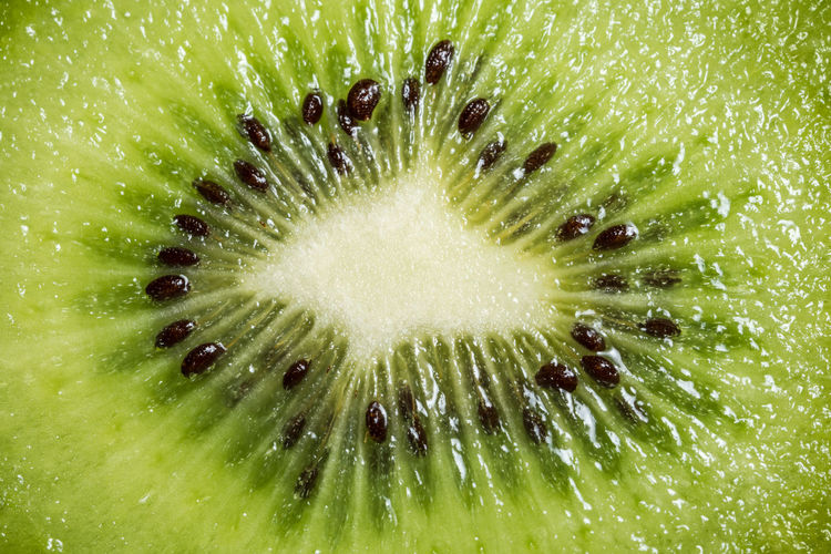 Kiwifruit Abstract Backgrounds Close-up Concentric Cross Section Day Exoticism Food Food And Drink Freshness Fruit Full Frame Green Color Healthy Eating Healthy Lifestyle Indoors  Nature No People Ready-to-eat Saturated Color Seed SLICE Studio Shot Vibrant Color