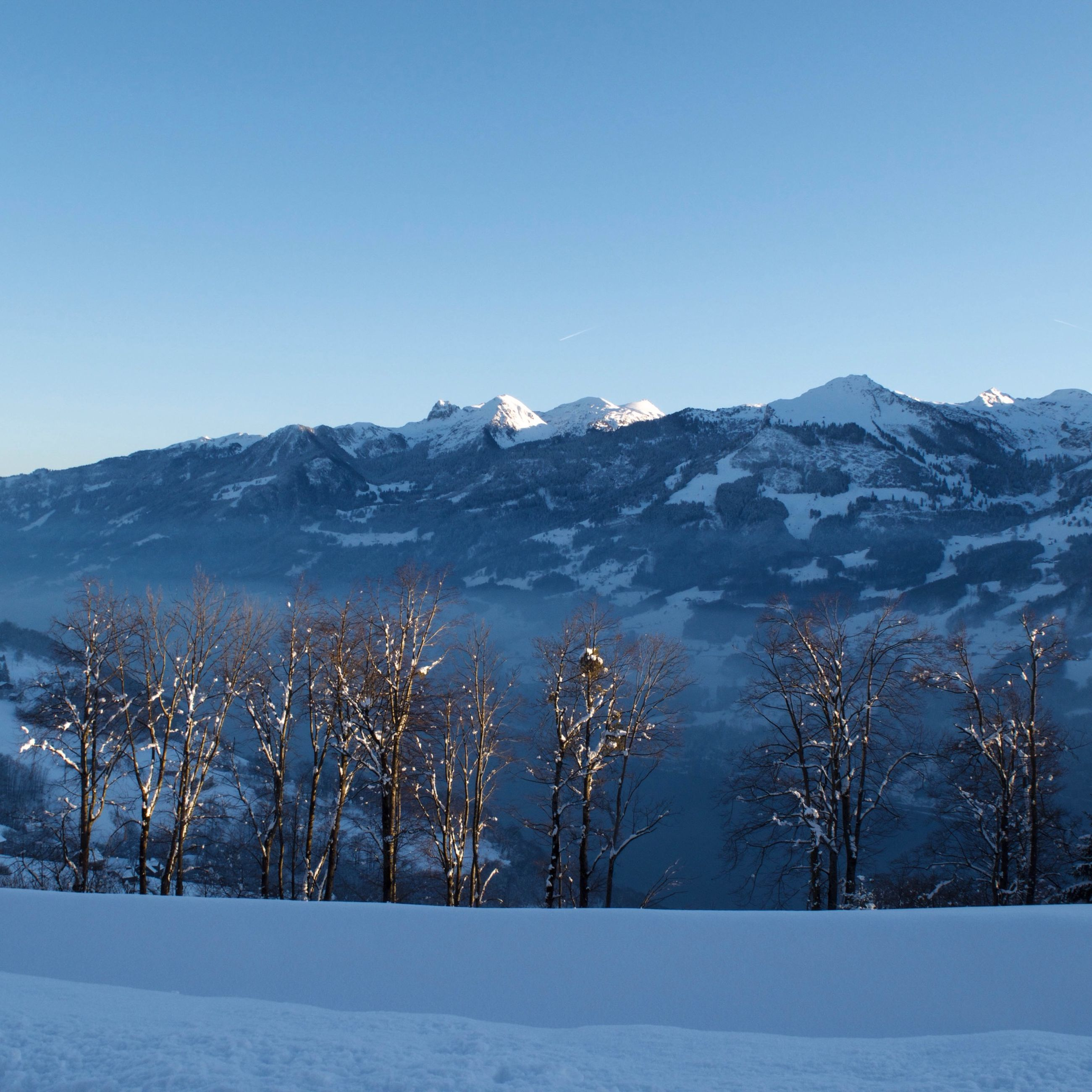 snow, winter, cold temperature, clear sky, season, tranquil scene, tranquility, mountain, copy space, landscape, scenics, beauty in nature, weather, nature, covering, blue, snowcapped mountain, mountain range, tree, non-urban scene