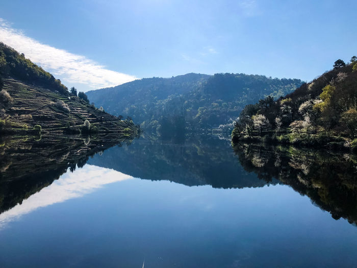 Morning ride Tranquility Scenics - Nature Beauty In Nature Nature Day Outdoors Landscape Environment Plant Tranquil Scene Galicia Ribeira Sacra Lugo Belesar Chantada ShotOnIphone Rio Miño Reflections In The Water Reservoir Springtime