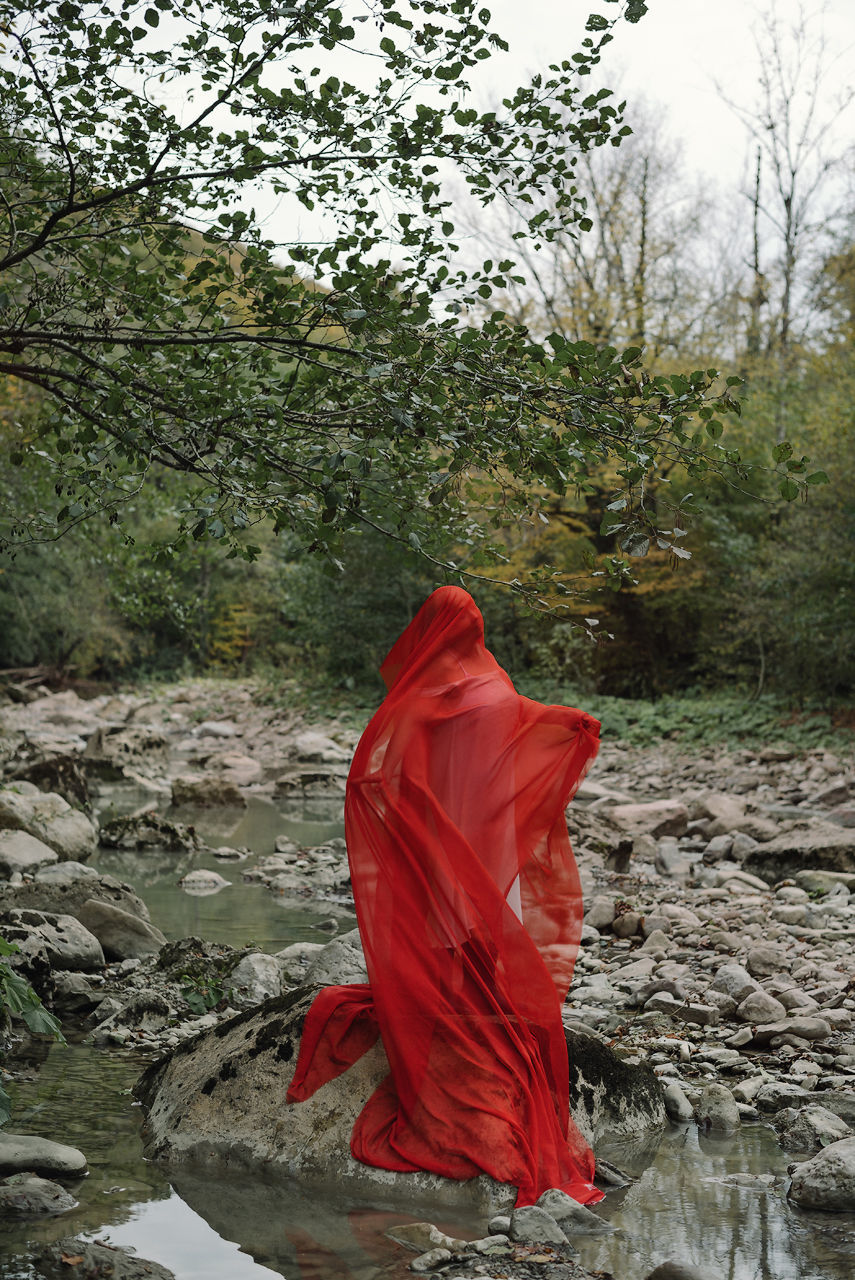 RED STANDING ON ROCK BY WATER