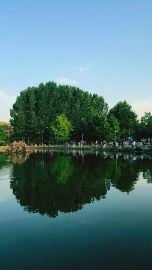 Water Reflection Tree Waterfront Plant Sky Lake Nature Beauty In Nature Group Of People Green Color Clear Sky Day Copy Space Tranquility Architecture Built Structure Outdoors Growth