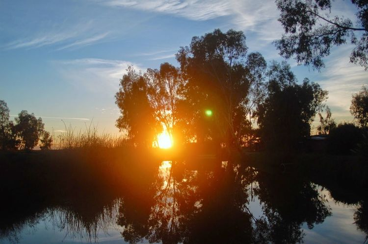 Sunset Silhouettes Water Reflections Tree_collection  Simplertimes
