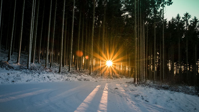 Sunset / Winter / Schieferstollen Recht (BE) EyeEmNewHere Beauty In Nature Cold Temperature Day Field Frozen Landscape Mood Nature No People Outdoors Scenics Sky Snow Sun Sunset Tranquil Scene Tranquility Tree Weather Winter