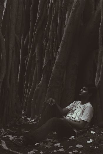 Alone Time Woods Dryleaves