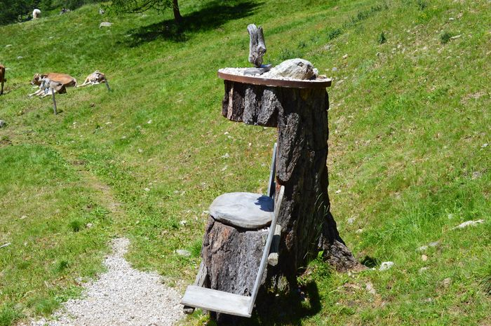 Italia Italy Italien Alto Adige Südtirol South Tyrol Chair Plant Grass Green Color Nature Day No People Sunlight High Angle View Growth Field Outdoors Wood - Material