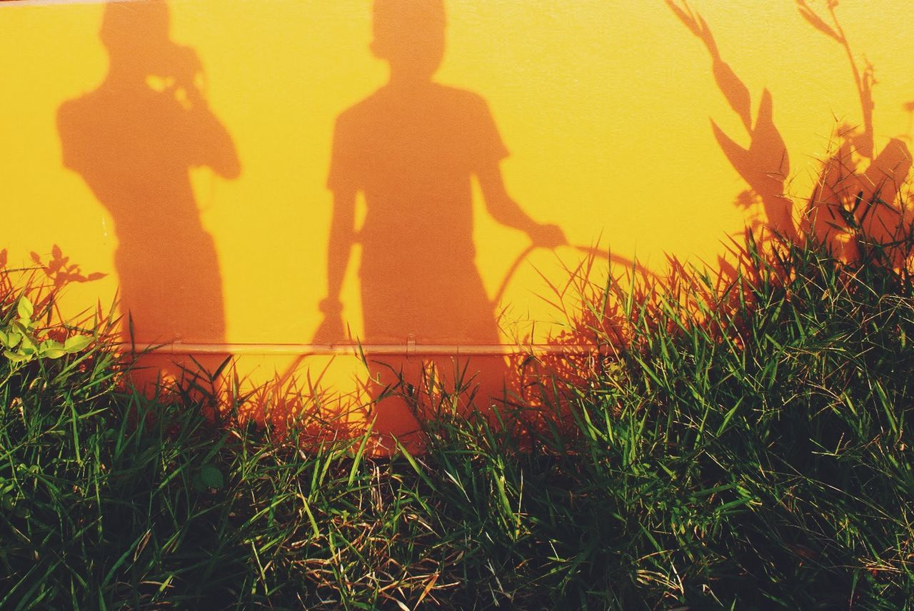Shadow of people on yellow wall by grass in back yard