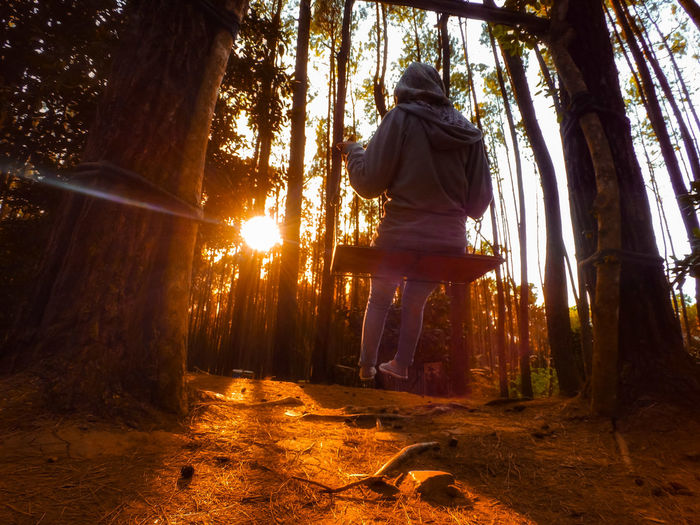 Low angle view of woman swinging in forest during sunset