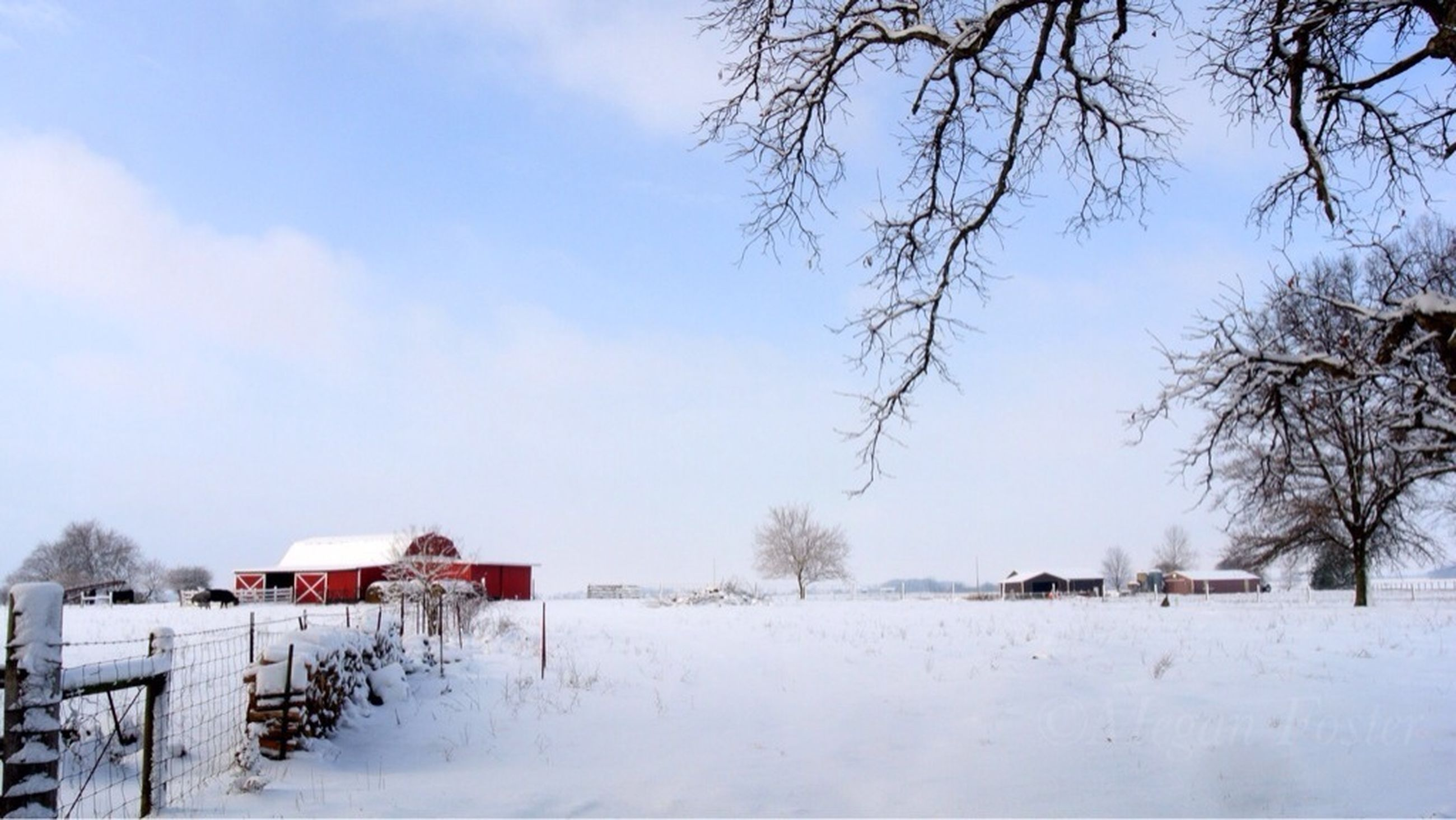 snow, winter, cold temperature, built structure, building exterior, architecture, house, season, weather, covering, field, landscape, sky, tree, residential structure, bare tree, nature, white color, tranquility, tranquil scene