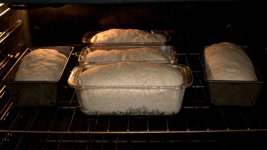 Ready, Set, Bake! Baking Bread Brown Close-up Cooking Detail Food Food And Drink Full Frame Healthy Eating Indoors  Making Bread Obsolete Part Of Preparation  Selective Focus Still Life Table