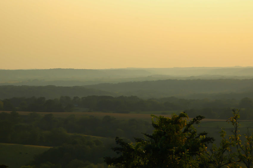Horseshoe Mounds Galena Galena, Illinois Nature No People Tree Sunset Beauty Is Everywhere  Day Landscape Mountain Vacations Jo Daviess County Beauty In Nature Scenics Forest Yellow Fog Nature Sunlight Beauty Outdoors Sky Tree Evening Sky