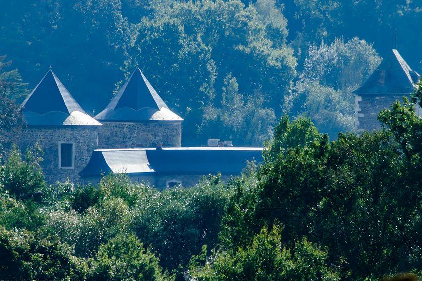 Le Vieux Château De Neuville En Condroz Tree Outdoors Scenics Day Nature No People Treetop Architecture