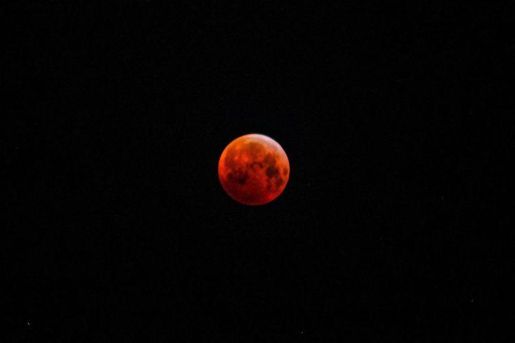 View of moon at night