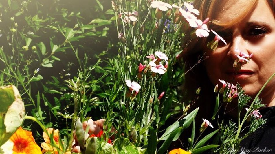 Sadness And Sorrow From My Point Of View Lilymayparker.blogspot.be Eyem Nature Lover Lily May Art Belgium Lily May Parker Lily Behind The Scene Earn My Memory  Behind The Lens Lily Style Check This Out Weeds Are Beautiful Too For Once I See You