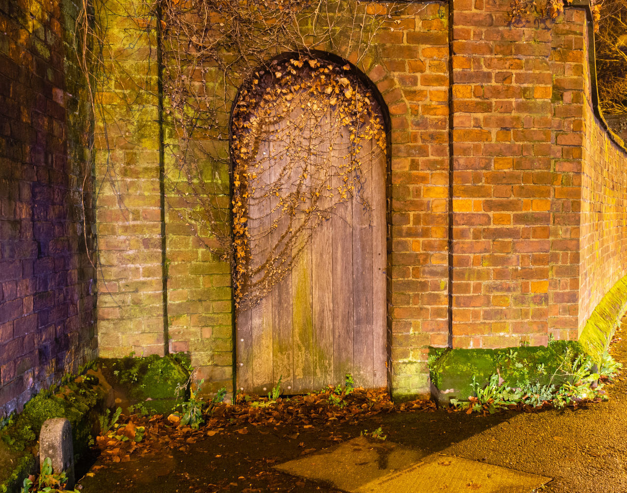 wall, brick, architecture, brick wall, no people, wall - building feature, built structure, nature, history, plant, the past, arch, day, outdoors, old, plant part, leaf, building, solid