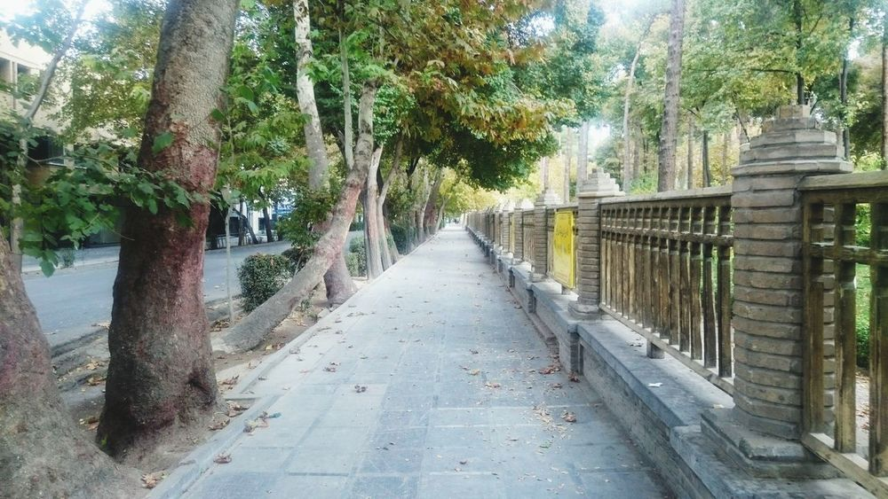 ©Motaleb Kianizad Date : 2016 - 11 - 20 Loc: Isfahan - Esfahan - Iran 📷SONY XPERIA Z3 Tree The Way Forward No People Nature Day Outdoors Beauty In Nature Tranquility Scenics Bamboo Grove Water Iranianwomen Iranian_photography Irani IranNature Iran Nature Iranian People Iran Iran Street Photography Iranian Isfahan Mustseeiran Mustseeisfahan Building Exterior Built Structure