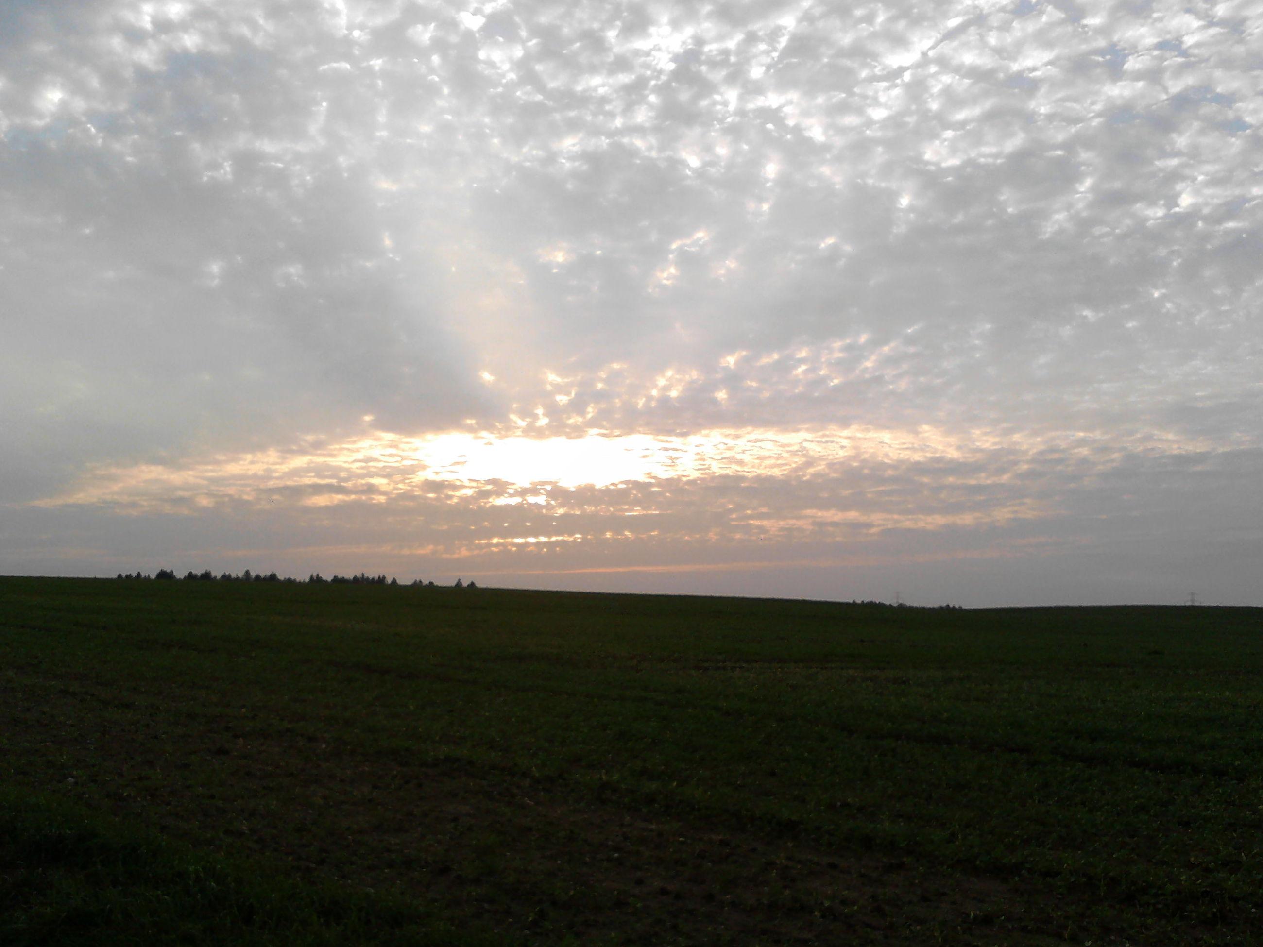 tranquil scene, tranquility, scenics, landscape, sky, sunset, field, beauty in nature, cloud - sky, grass, nature, sun, idyllic, cloudy, cloud, grassy, horizon over land, rural scene, sunlight, outdoors