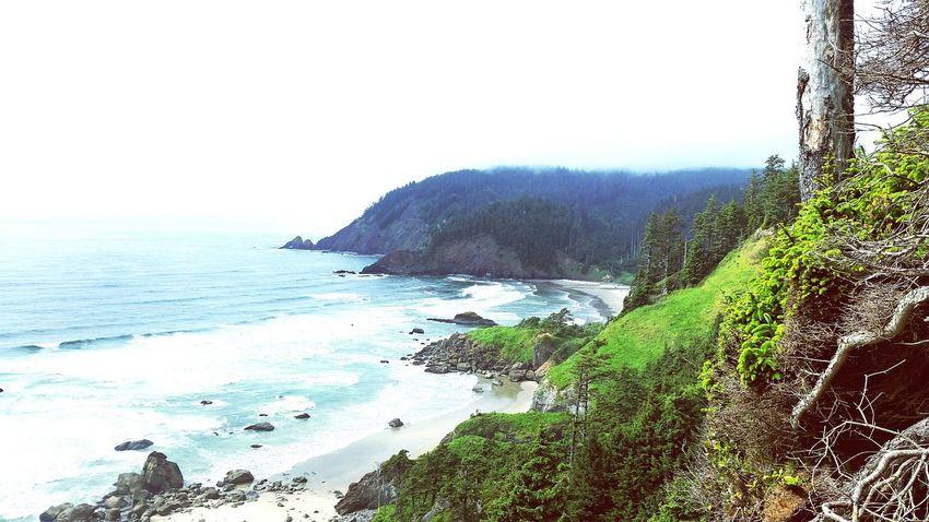 Beach Nature Northwest Oregon Oregon Coast Ocean