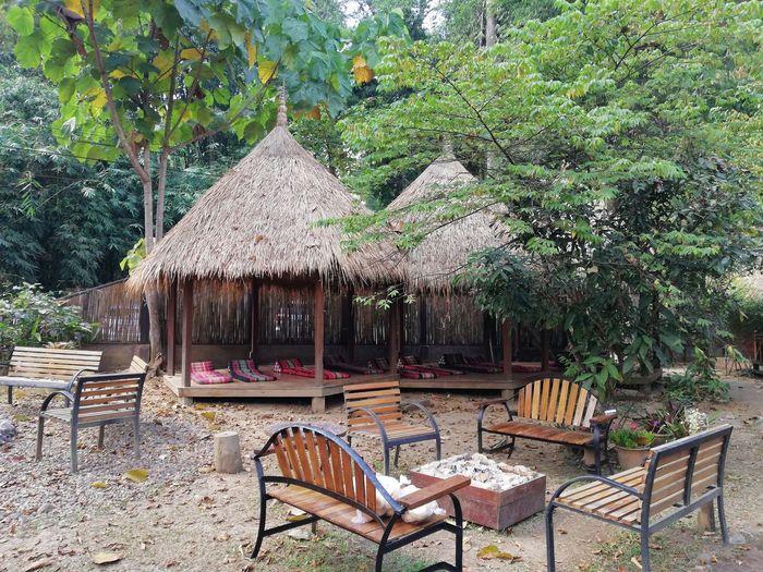 Relaxing Chiang Mai   Thailand Chiang Dao Thai Life Thailand No Filter Tree Chair Sky Outdoor Cafe Gazebo Calm Sun Lounger