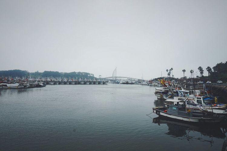 JEJU ISLAND  Jeju Travel Korea South Korea Travelholic