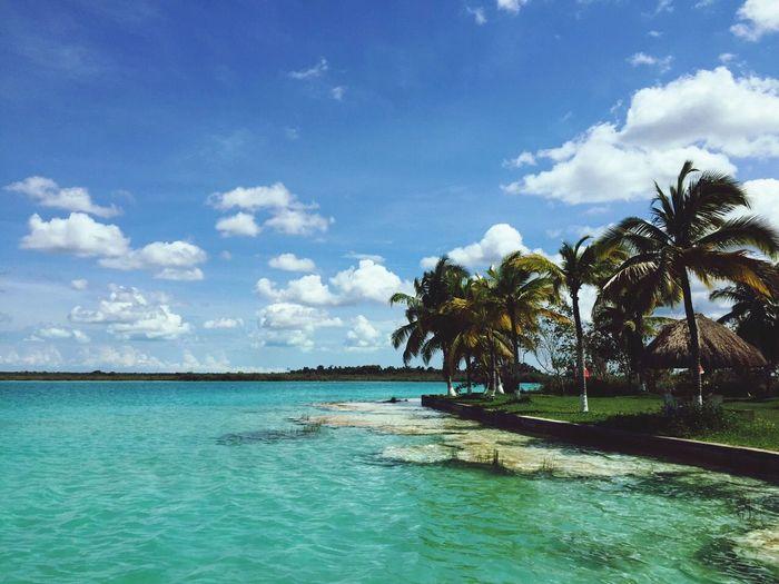 Beautiful mexico! Bacalar Pueblomagico Lagoon Traveling Canon Canonphotography Nature